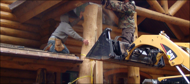 Log Home Log Replacement